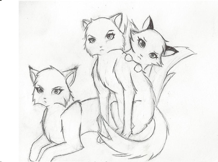 warrior cats by kelskar on DeviantArt Warrior Cat Drawings