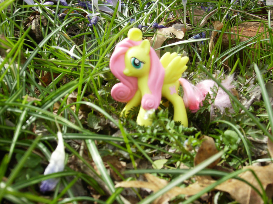 Shy in nature by Madame-Fluttershy