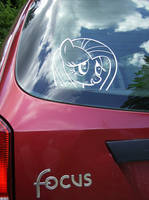 My car has been ponified
