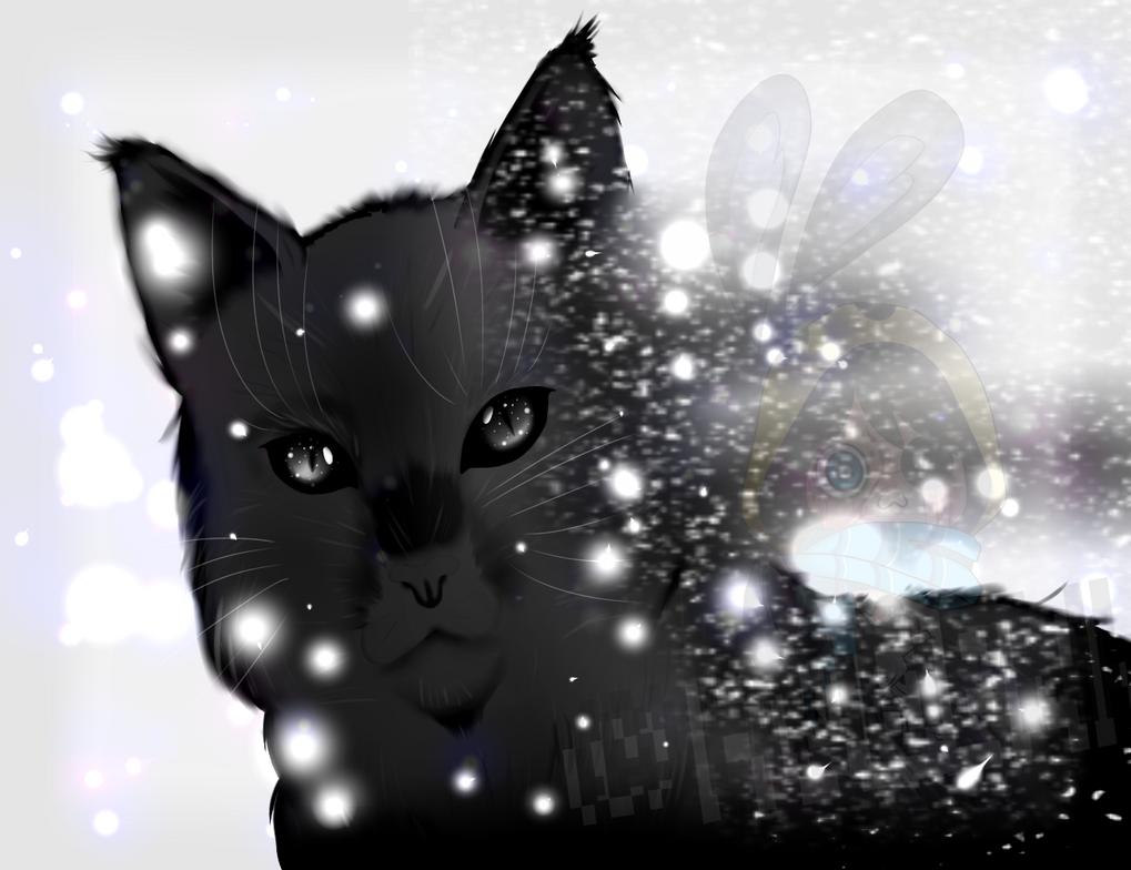 :.Holy K-Night.: AVISO LEER DESCRIPCION! by Densetsu-Sama