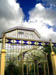 Clouded Glass House