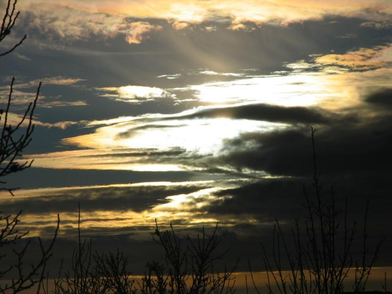 twilight from my window by sataikasia