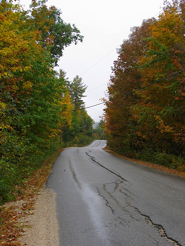 autumn road in Maine by sataikasia