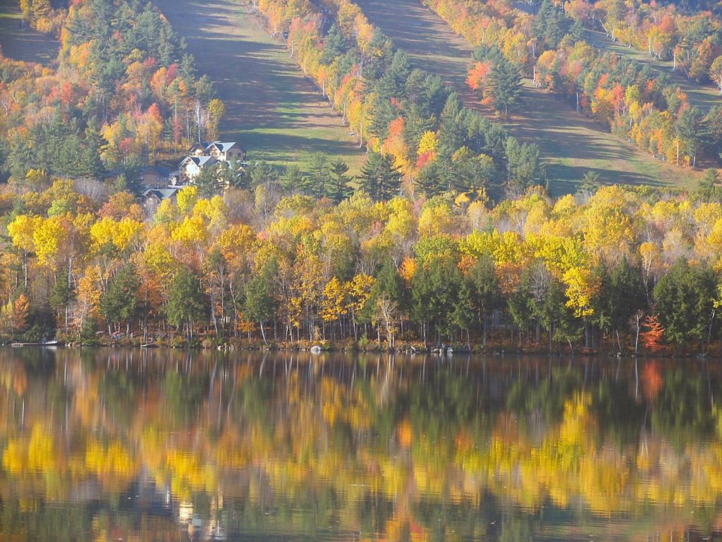 autumn reflections by sataikasia