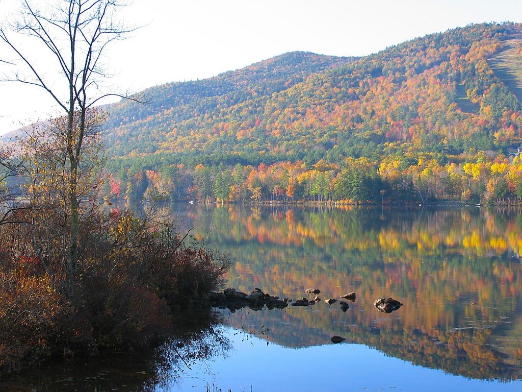 autumn lake foliage by sataikasia