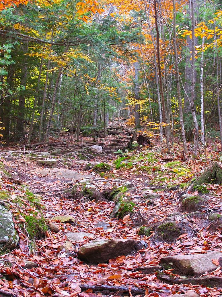 Sabattus Mountain trail by sataikasia