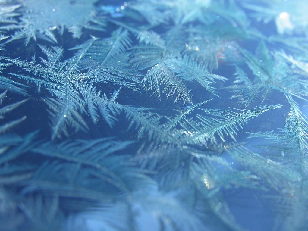 frosty morning by sataikasia