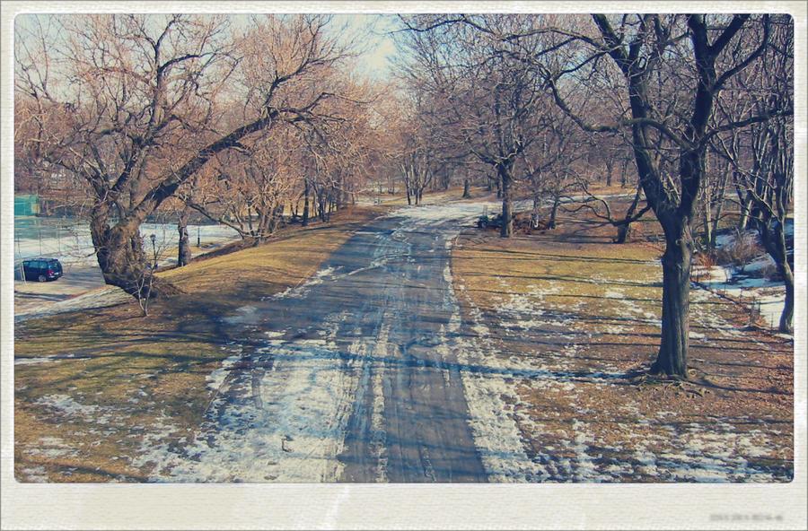 Central Park, NY by sataikasia