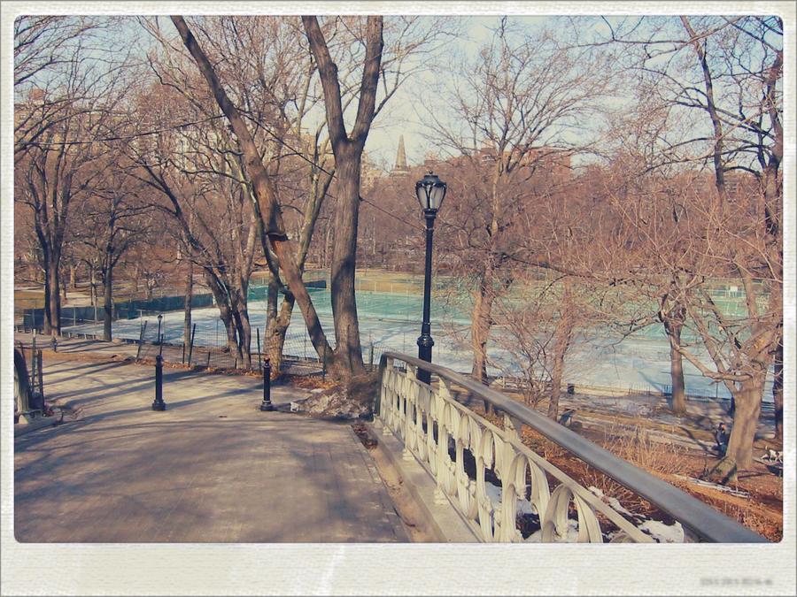 winter in Central Park, NY by sataikasia