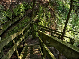 Descending Trail 3 by sixwings