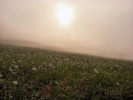 Burning Fog by sixwings