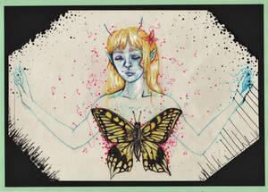Bittersweet Butterfly
