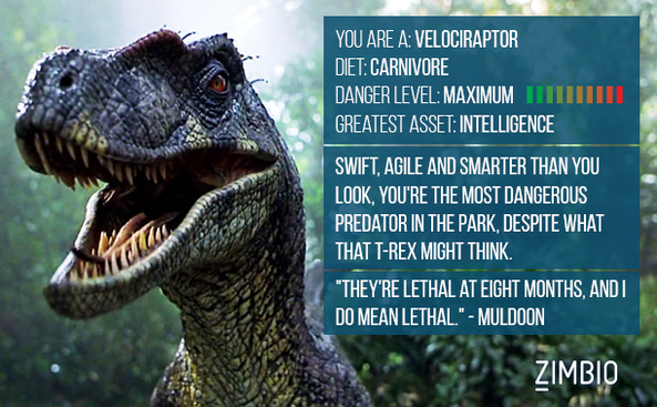 Dino Quiz: Velociraptor by Jayko-15