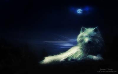 'Wolf'