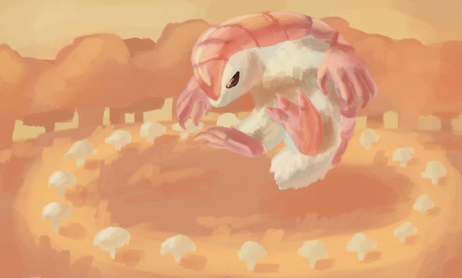 Pink fairy armadillo pet - photo#46