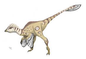 Philovenator by DrawingDinosaurs