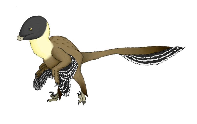 Balaur bondoc by DrawingDinosaurs