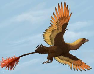 Jehol Bird by DrawingDinosaurs