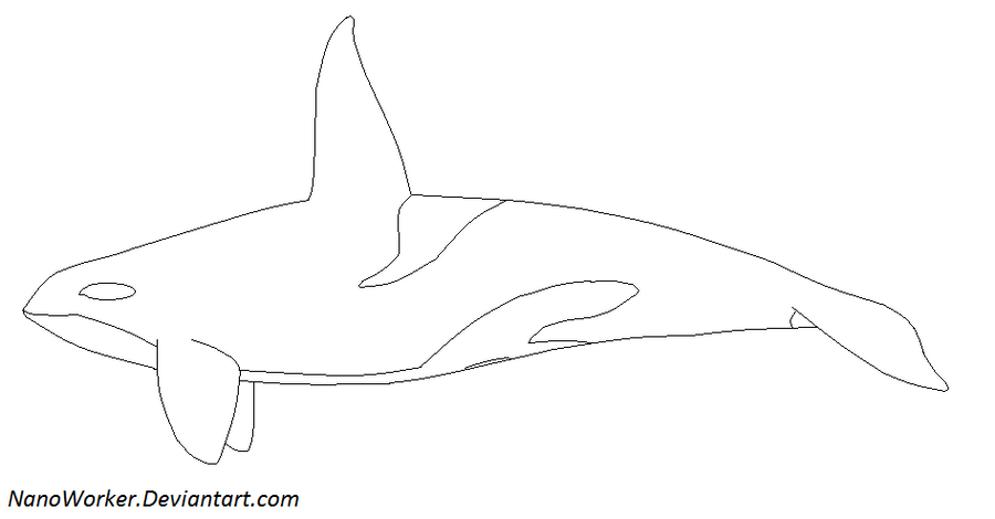 Orca Lineart by NanoWorker