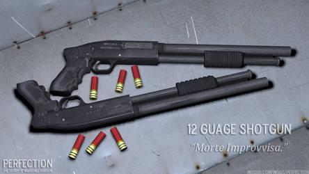 Perfection 12 Gauge Shotgun