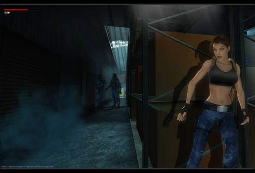 Lara Croft - TR3 20
