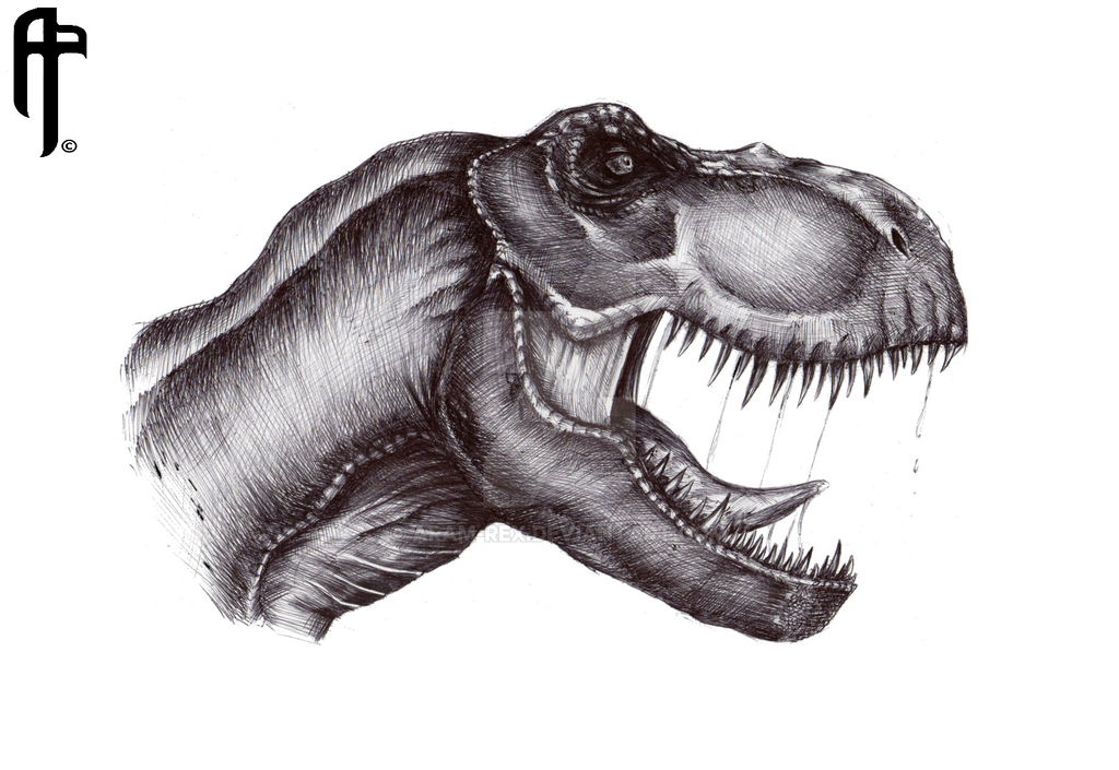 jurassic_park_tyrannosaurus_rex_profile__by_aram_rex-d8o505d.png