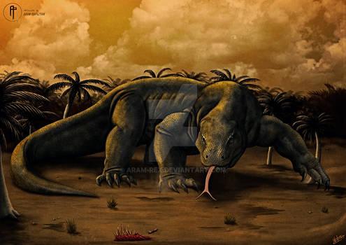 Komodo Dragon - The Far Wild FINAL