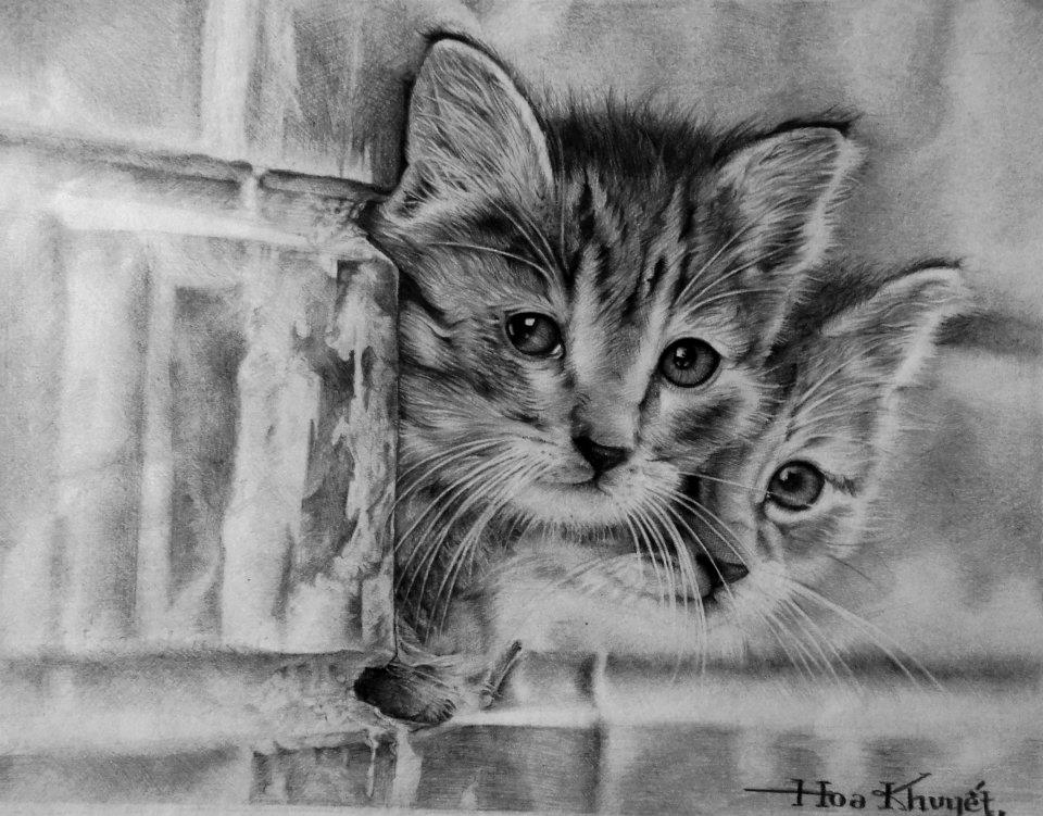 Cute cat drawing by gattanday