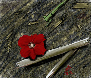 Remembrance by Adan-Cricjer