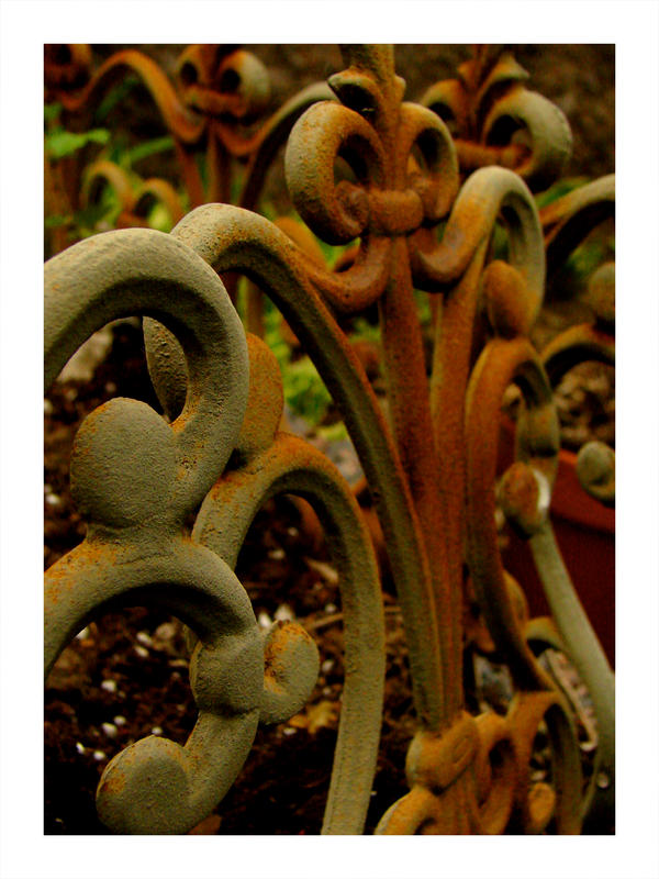 rusty.... by harmonyrose