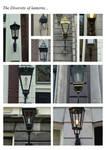 The diversity of lanterns...