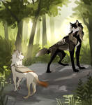 WoLF: A Chance Encounter (collab)