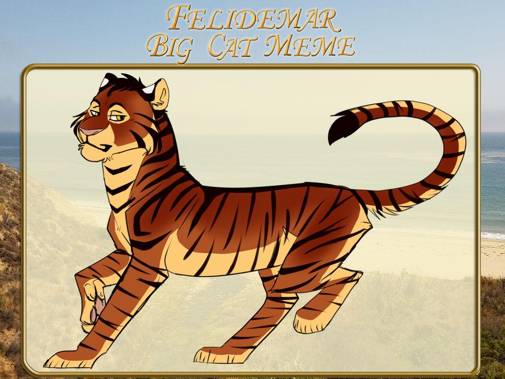 Feli Big Cat Meme By Daschocolate On Deviantart