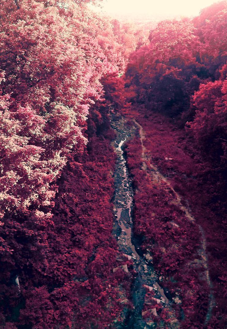 Fantasy by Tsuriaino-Koshka