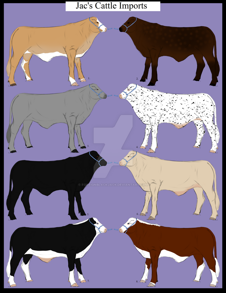 Jac's Cattle Imports ~ Round 1 - 6/8 Open by ForeignBlackJack