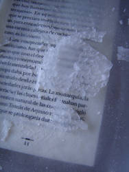 Frozen Book by sunaipa