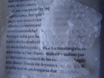 La Monarquia -Monarchy- by sunaipa