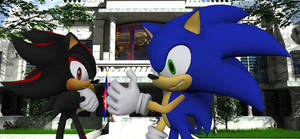 Shadow And Sonic White House
