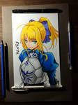 fate/stay - Saber