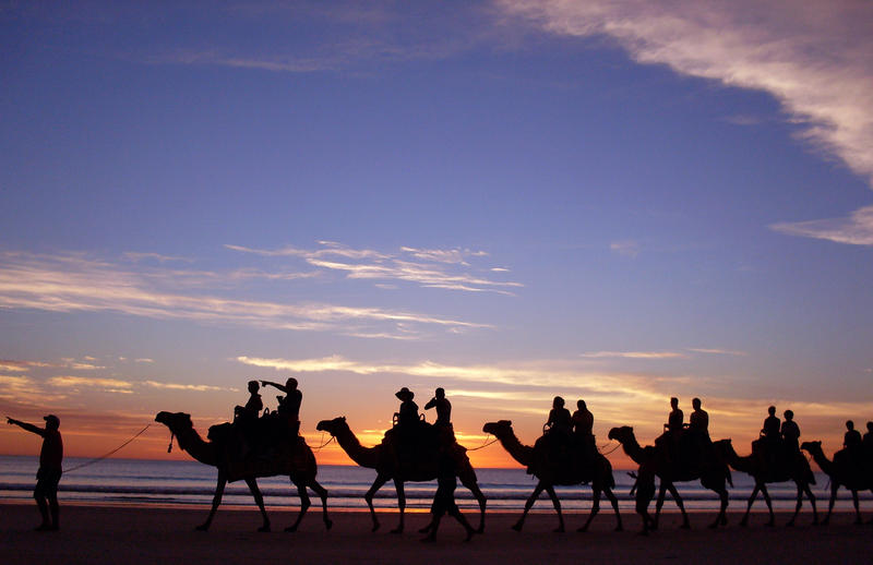 Cable Beach Sunset Camel Ride by Thrill-Seeker