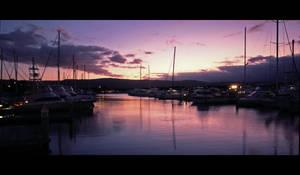 Port Douglas Harbour Australia