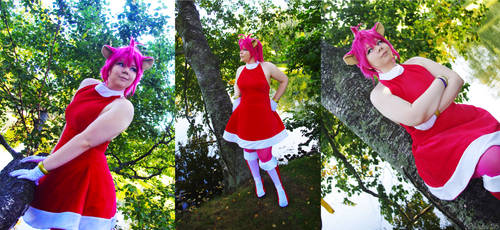 Sonic the Hedgehog, Amy Rose gijinka cosplay