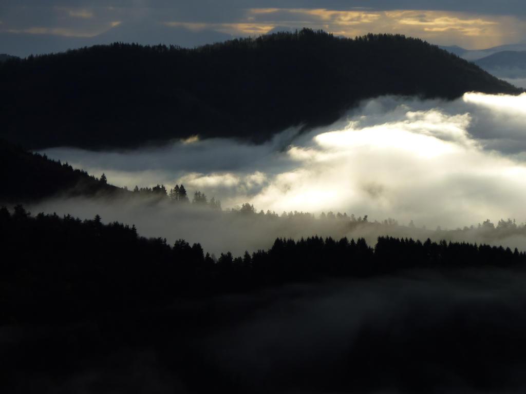 Darkening Mist by AdMalamCrucem