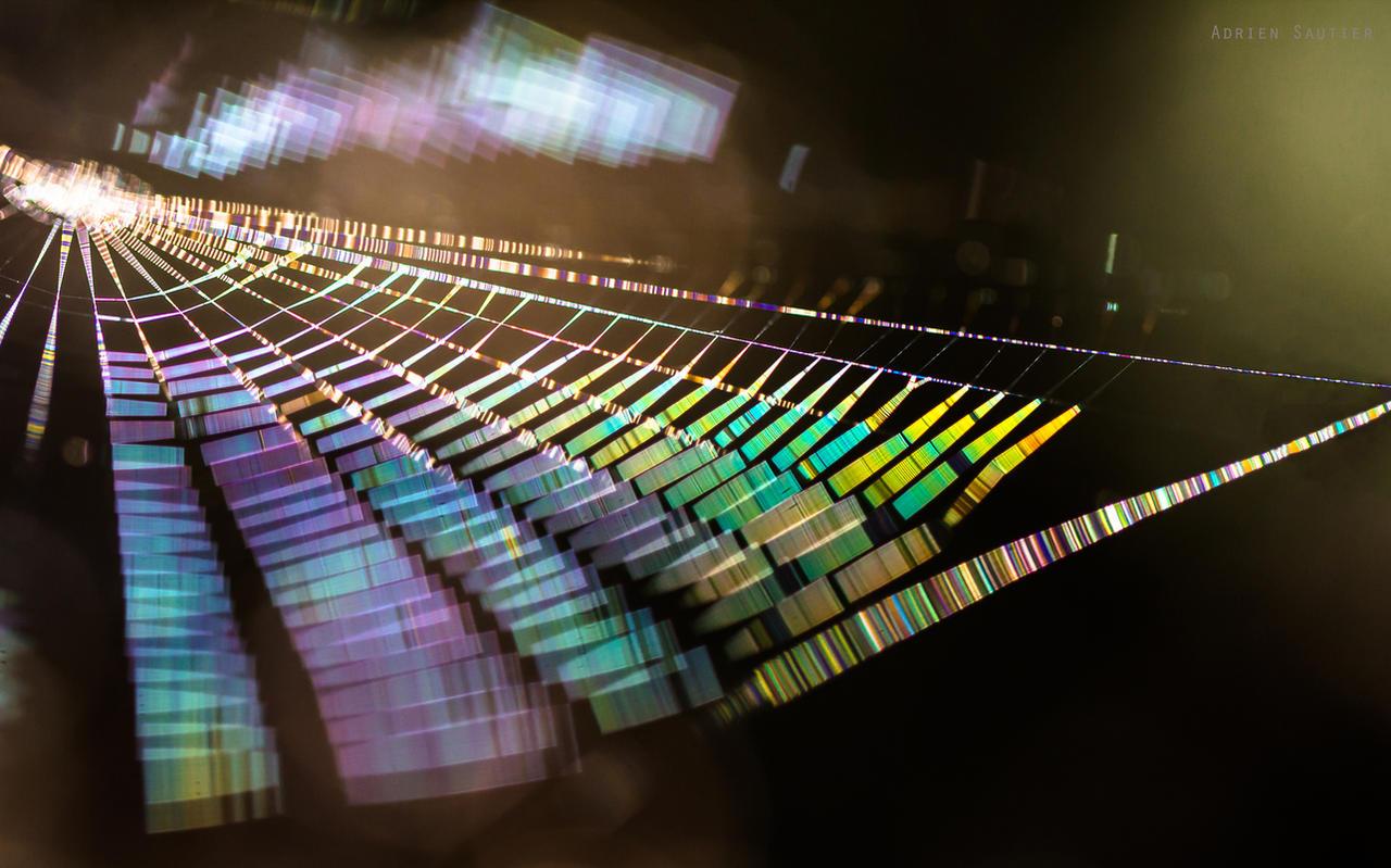 Rainbow Cobweb by AdMalamCrucem