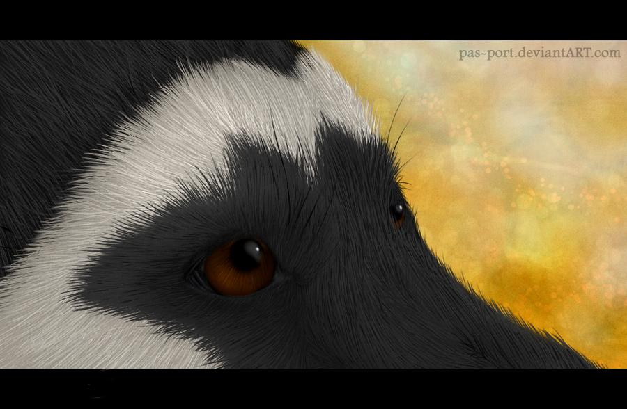 Eyes by Wandering-Rei