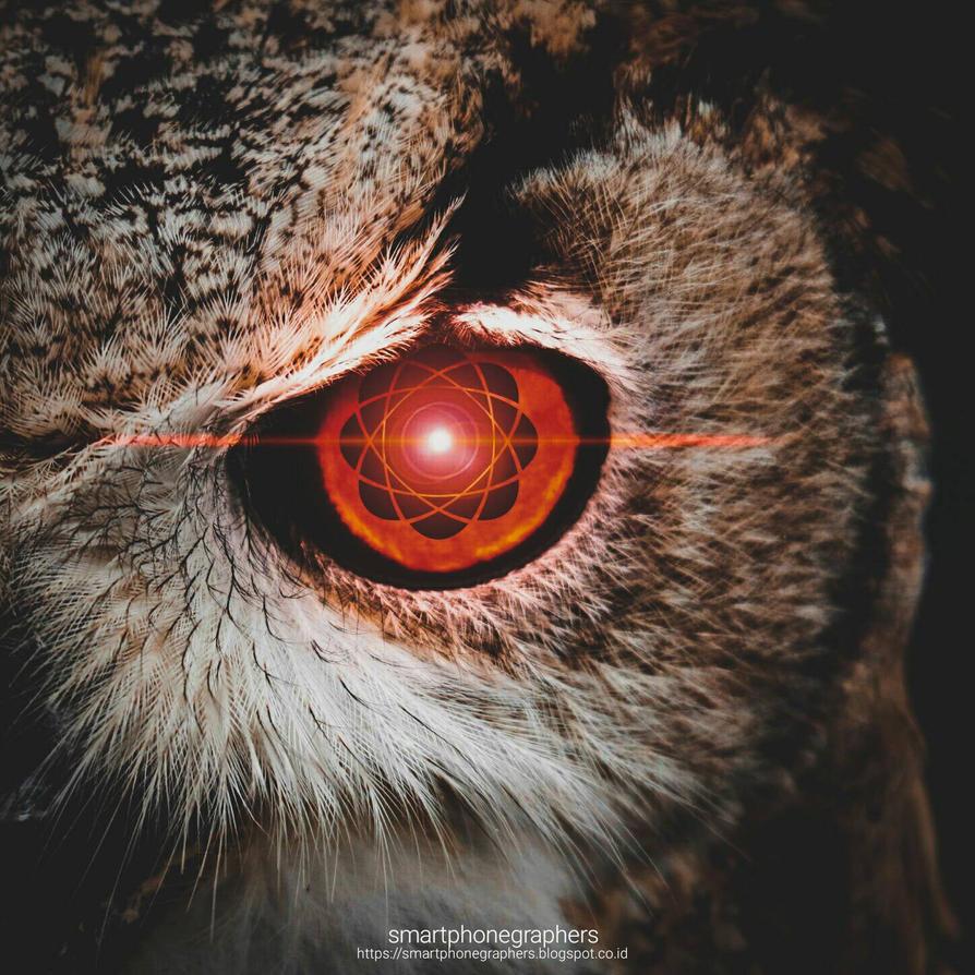 SHARINGAN IN OWL EYE by dhurzz