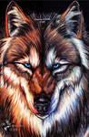 .:PW:..:Fire N Ice:. by I-WhiteLightning-I
