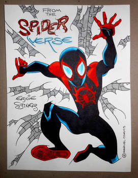 Miles Morales from the Spider-Verse
