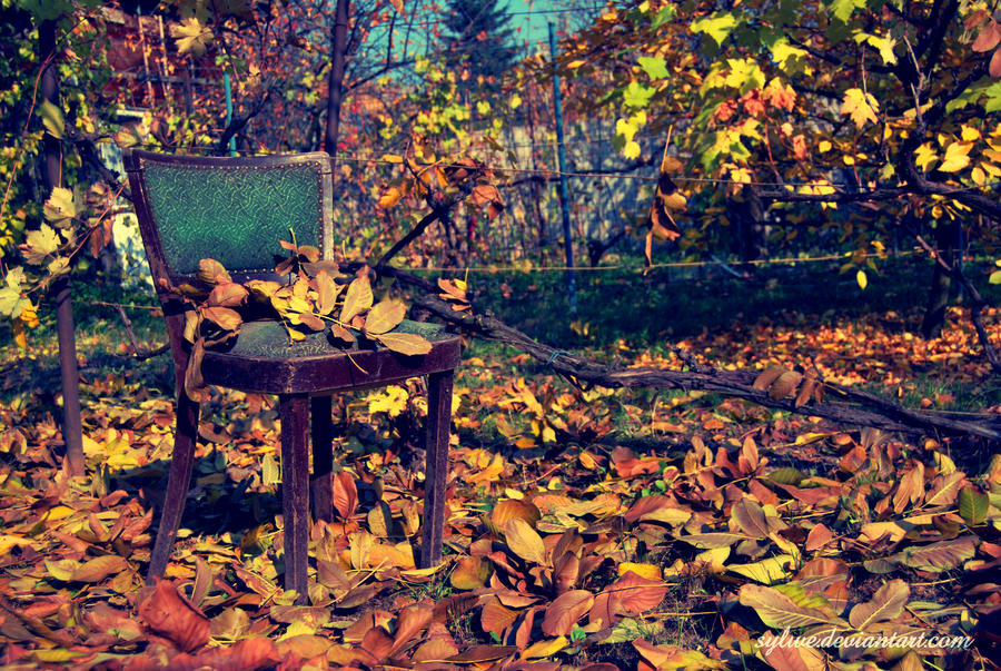 sit down in the autumn by Sylwe