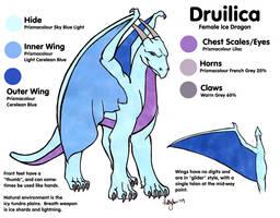 Druilica Reference Sheet